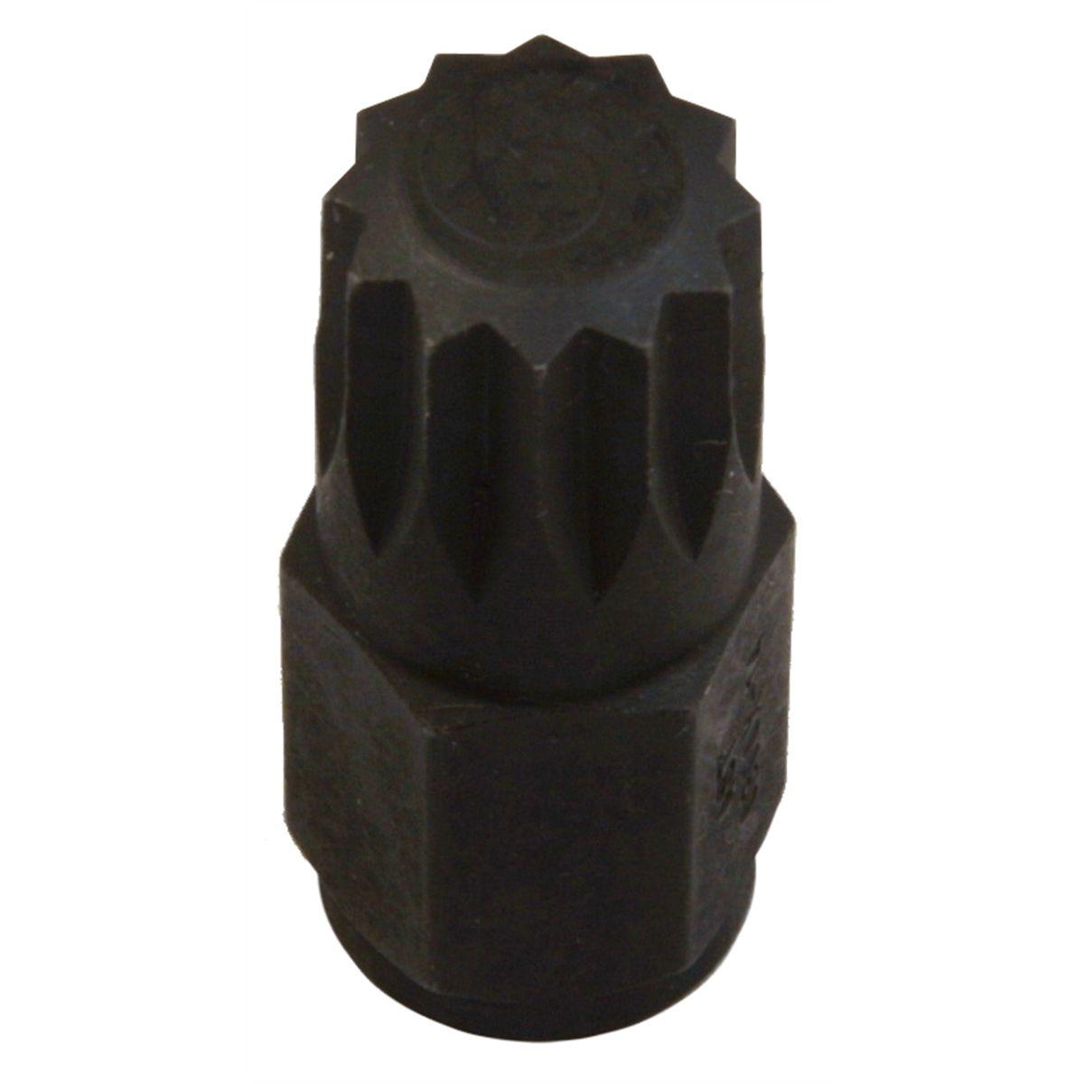 14mm 12 Pt Socket Bit Assenmacher Specialty Tools