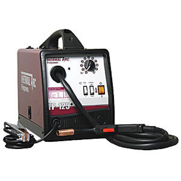 FP-125 MIG/Flux Cored Welder System 110 Amp Output, 120V | Thermal ...